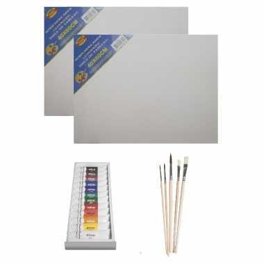Schilders verf set van 12x tubes acrylverf/hobbyverf 12 ml + 2x canvas doek + 5x kwasten