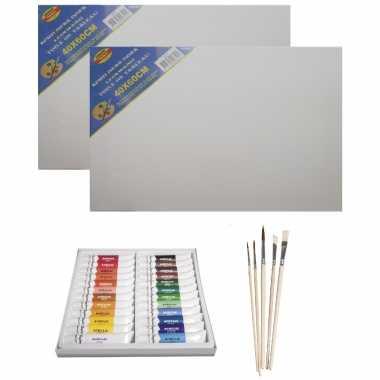 Schilders verf set van 24x tubes acrylverf/hobbyverf 12 ml + 2x canvas doeken + 5x kwasten