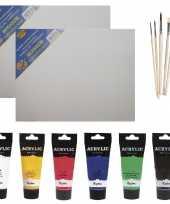 Schilders verf set van 6x tubes acrylverf hobbyverf 75 ml 2x doek 5x kwasten